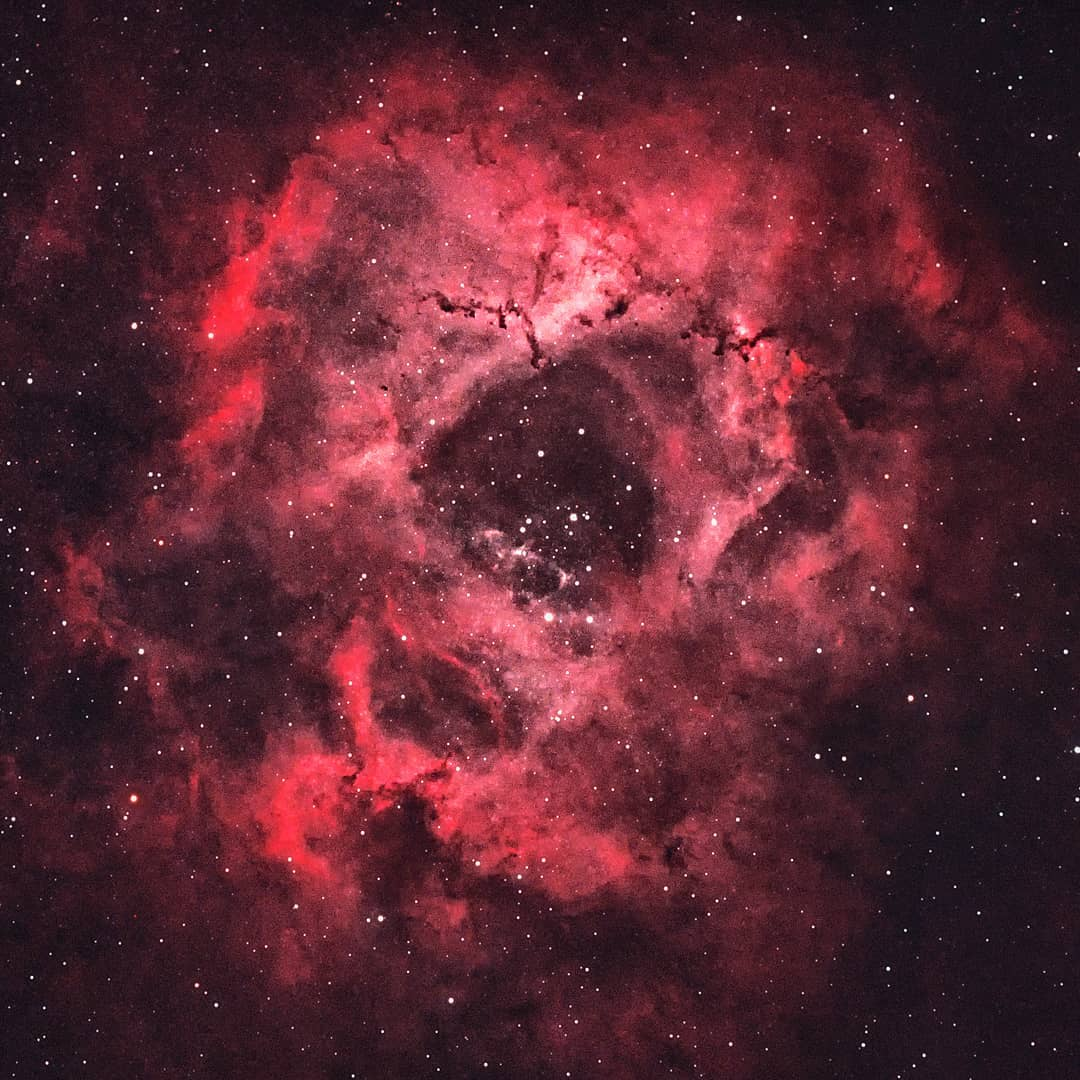 The Rosette Nebula (NGC 2244)